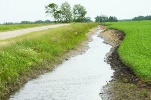 Stream in a Ditch