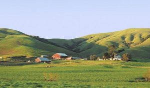 Agriculture in Marin County