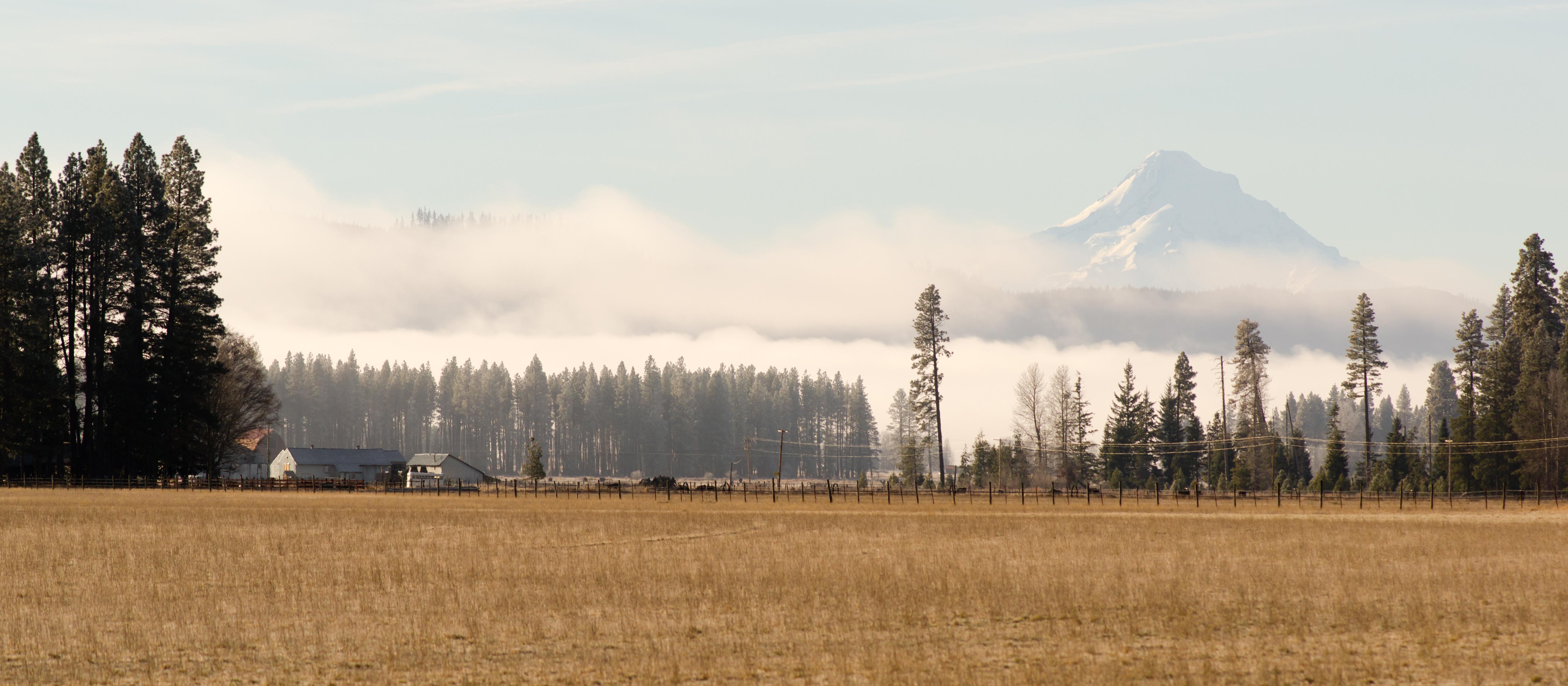 Cascadia wildlands v oregon department of fish wildlife for Oregon department of fish and wildlife jobs