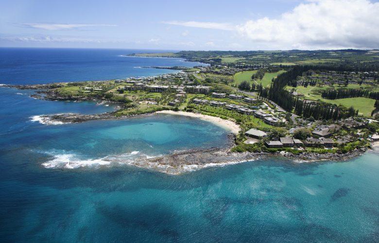 plf amicus briefs - COUNTY OF MAUI, HAWAII V. HAWAII WILDLIFE FUND