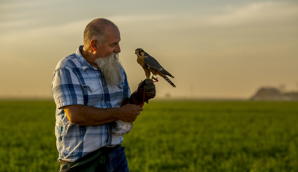 falconer Sues After Armed Government Agents